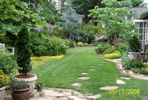 garden / by Barbara Coyne