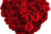 Kenneth / Happy Valentines Day