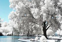 Seasons | Winter / Winter