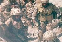 1990-92  Persian  Gulf  War Iraq / 1990-1991 Operation Desert Shield. 1991-1992 Operation Desert Storm / by Margaret Martin