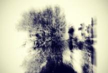 photo • image
