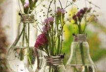 Party Decor / by Ashley Cooper