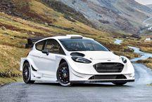Fiesta'17 WRC