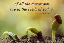 Inspiring Garden Quotes