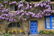 Homes and gardens / Beautiful homes and their surrounding, just like the name implies / by Susan Stonehocker