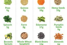 Vegetarian/Vegan Recipes / Recipes that provide lots of great plant based protein!