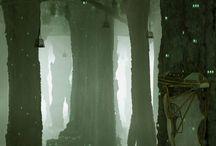 Swamp & tree`s Enviroment concept