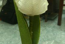 Marta krepina kwiaty