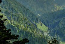 Let's elope to Kashmir ♥