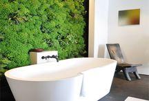 Living Walls / Living Walls at Interior Gardens