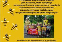 Przedszkole w Gronowie Elbąskim Wielki Dzień Pszczół