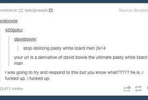 Tumblr Ridiculousness
