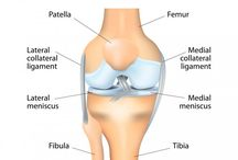 Knee Replacement in India