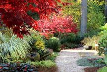 Gardens in Autumn