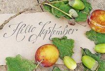 Hello autumn ✿ღ