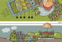 Rain Garden Ideas