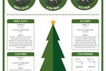 Christmas / The magic, the science and the spirituality of Christmas