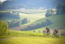 Mountainbiken im Mühlviertel / Im Mühlviertel finden Sie sportliche Herausforderung bei zahlreichen Mountainbiketouren und Veranstaltungen.