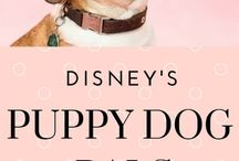 Disney's Puppy Dog Pals Party Supplies and Ideas / Disney's Puppy Dog Pals are the newest party theme for kids to have!