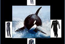 Orca Gear & Apparel @ Trivillage.com / Orca Gear & Apparel @ Trivillage.com