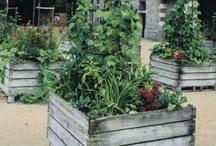 Ogrody użytkowe