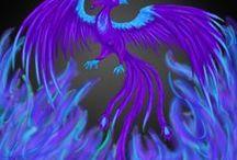 phoenix / by iamcory