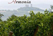 Parole Di Vino / Raccontare il vino è complicato: il vino è emozione, colore, sapore, esperienza, condivisione. Abbiamo provato a raccontarvi cos'è il vino per noi di Ca'Rugate: a ogni lettera dell'alfabeto abbiamo abbinato una storia. Iniziamo il nostro viaggio, dalla A alla Z.
