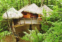 Cabanes perchées / Cabanes dans les arbres, un petit aperçu du site des cabanes.com.