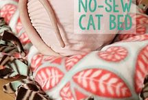 Cat bed-Kevin Ray