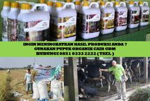 HUB 0851 0333 2222 ( TSEL ) Peluang Bisnis Modal Kecil / Peluang Bisnis Modal Kecil Untung Besar,Peluang Bisnis Modal Kecil Untuk Mahasiswa,Peluang Bisnis Modal Kecil Untung Lumayan,Peluang Bisnis Modal Kecil di Indonesia,  Apakah GDM GDM merupakan Pupuk Bio Organik Cair yang di hasilkan dari bahan-bahan organik dan bakteri yang diperlukan oleh tanaman.  BERMINAT DENGAN PELUANG DARI KAMI HUBUNGI :  0851 0333 2222 ( TSEL ) http://peluangusahaagro.com/