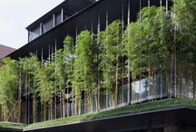 Biophilic Temples / Spaces inspired by nature to create spiritual mindfulness