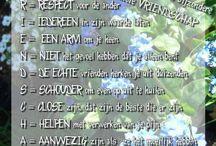 Mooie teksten