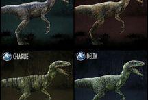 How Train Your Raptors