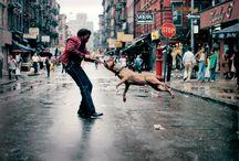 Jamel Shabazz / New york