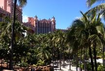 Bahamas Cruise / by Lindsey Williams