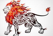 Lion images / Images of lions