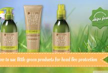 How to Use Little Green Products for Head Lice Protection / Do you suspect that your child may have a head lice infestation? Get protected with some help from Little Green products. Check out our blog to learn more.