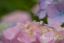 OneLovePictures Engagements / Some photographs from OneLove Pictures engagement photo sessions <3