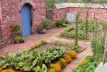 Beautiful Edible Landscapes and Gardens / aka pretty vegetable and fruit gardens / by Foy Joy