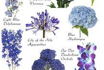 Цветы подборка
