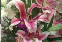 Special Occasion Bouquets / Birthdays, mothers day and beyond