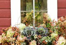 Davanzali, decorazioni autunno-inverno