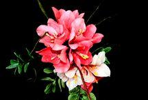 my flowers / all flowers in sugar paste