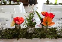 Dekoracje: mech / by Pretty Wedding