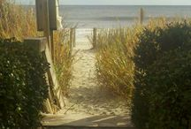 Beach Living / by Kimberly Strickland