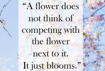 Quotes ..✌