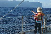 Boat-sea-ideas-live-dream