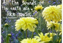 The Sound of Music / by Kay Reagan