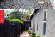 Side Yard Raised Gardens Potting