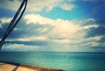 Alagoas beautiful beaches / Alagoas, Brasil: Lindas praias / Beautiful beaches